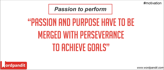 Passion and Perseverance