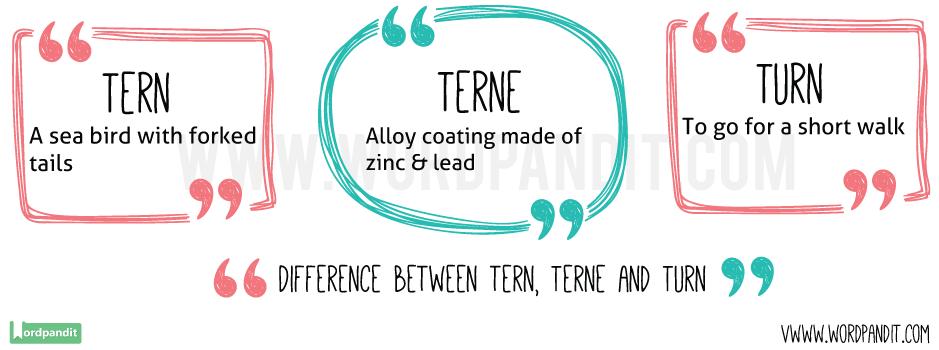 Tern-vs-Terne-vs-Turn